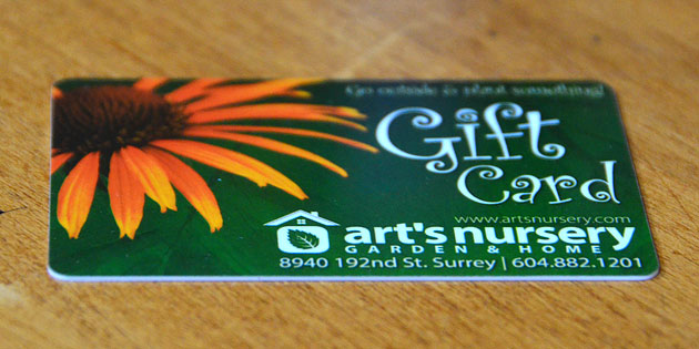 Arts Nursery Gift Card