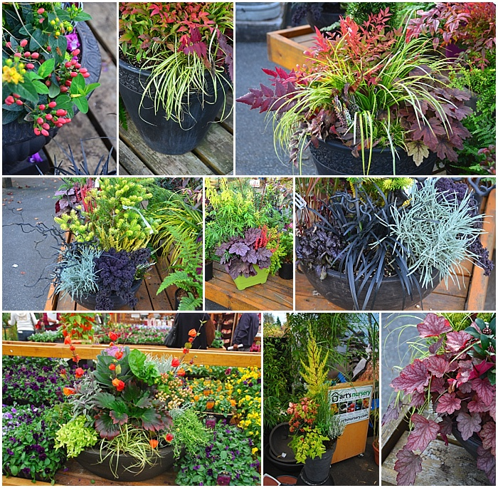 Fall Planter Collage