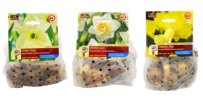 New Narcissus Varieties for 2015