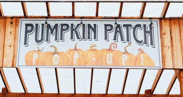 Pumpkin Patch Entrance