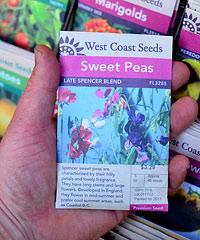 Sweet Peas