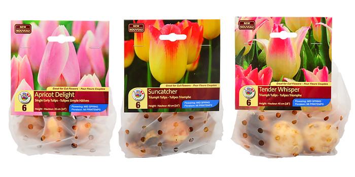 New Tulip Varieties for 2015