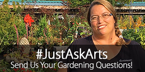 JustAskArts Plant and Gardening Q&A