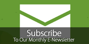 Subscribe to Arts Nursery E-Newsletter