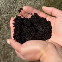 Organic Sea Soil