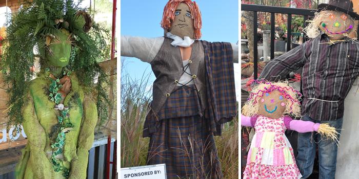 sponsor a scarecrow form