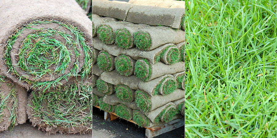 Turf and Sod Sales Metro Vancouver