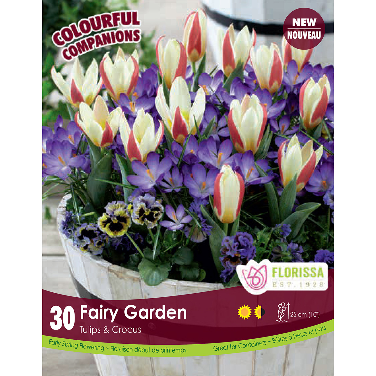 Colourful Companions 'Fairy Garden' Bulbs