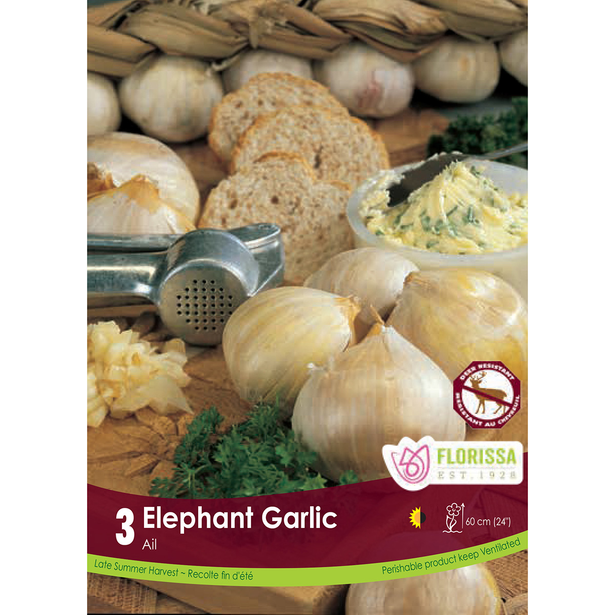 Garlic 'Elephant' Bulbs 3Pk