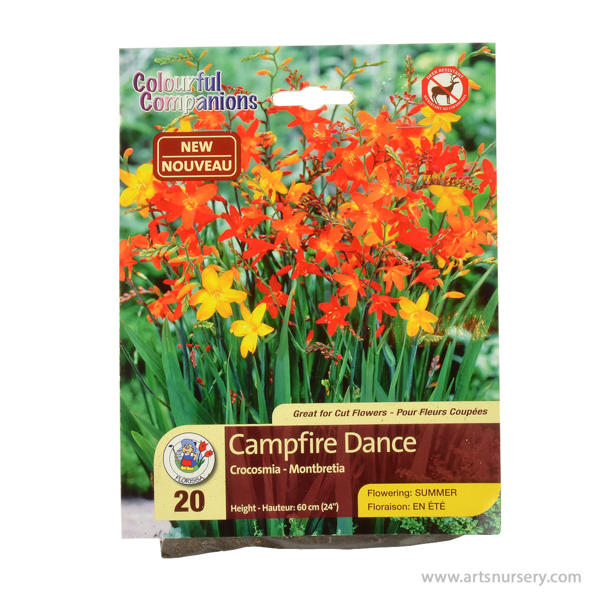 Crocosmia Campfire Dance Bulbs