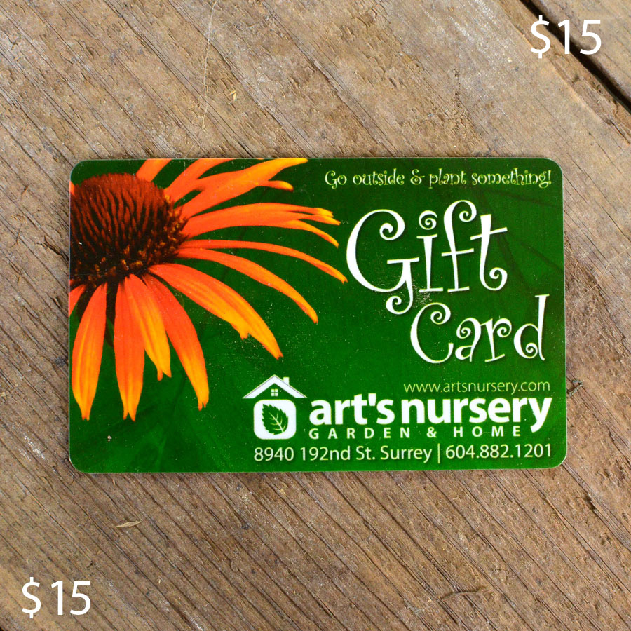 Arts Nursery 15 Dollar Gift Card