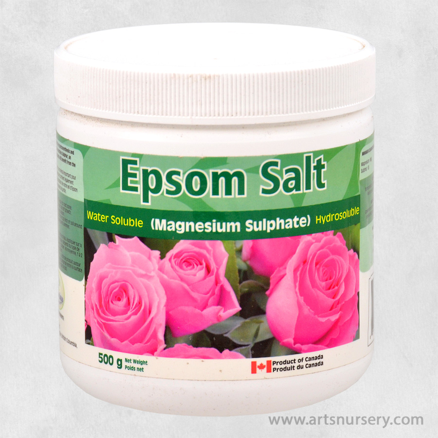 Orgunique Epsom Salt 500g