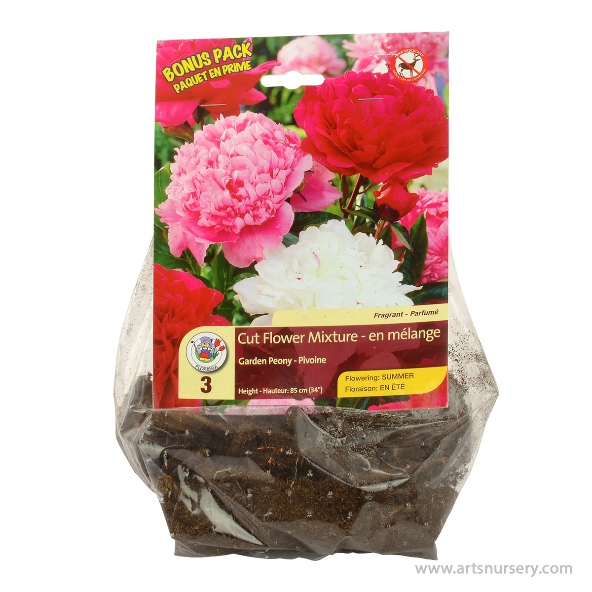 Peony Cut Flower Mixture Roots