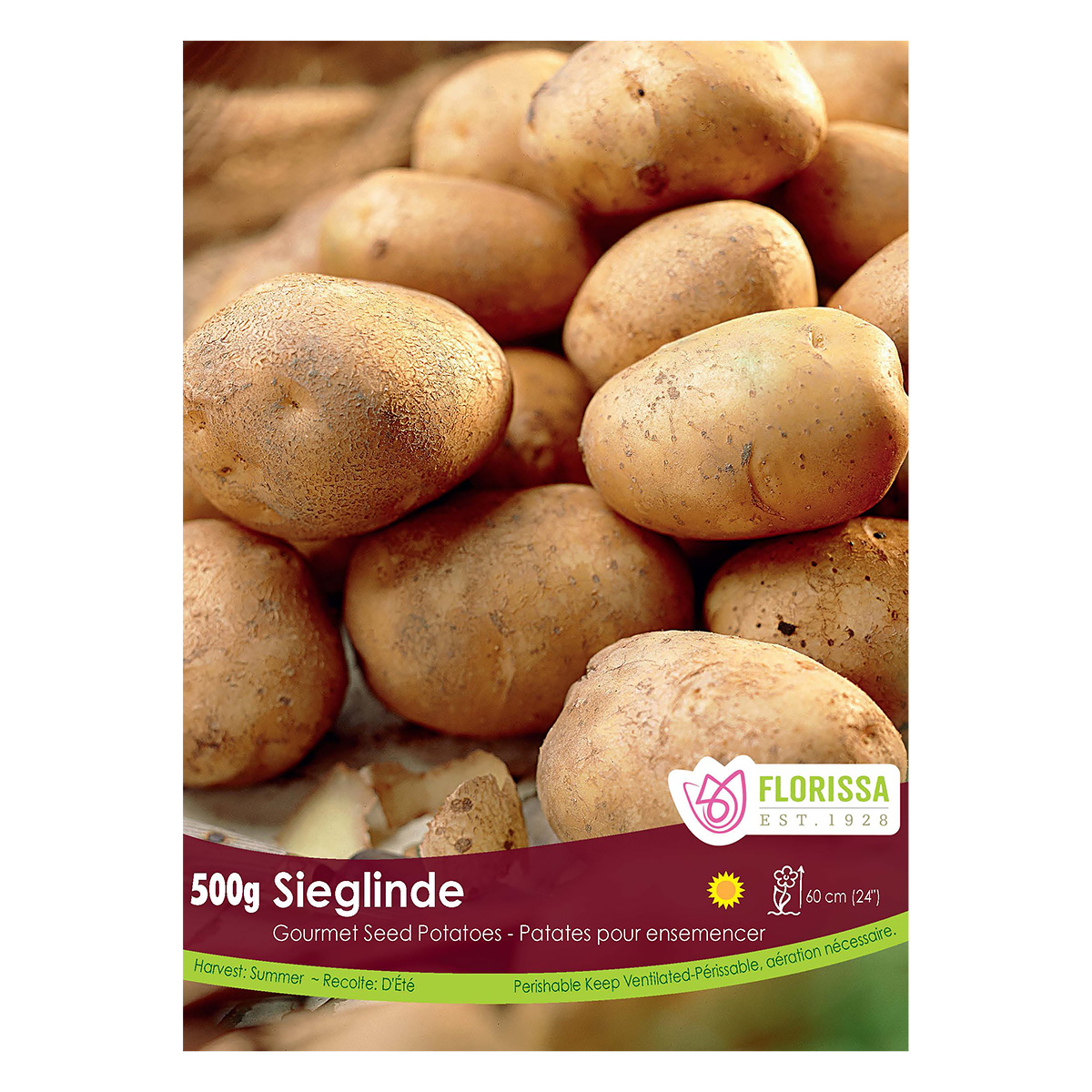 Gourmet Seed Potatoes 'Seiglinde'