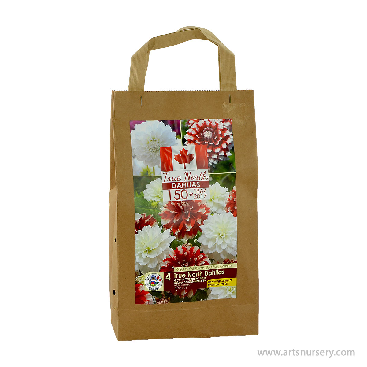 True North Dahlia Tuber Kit