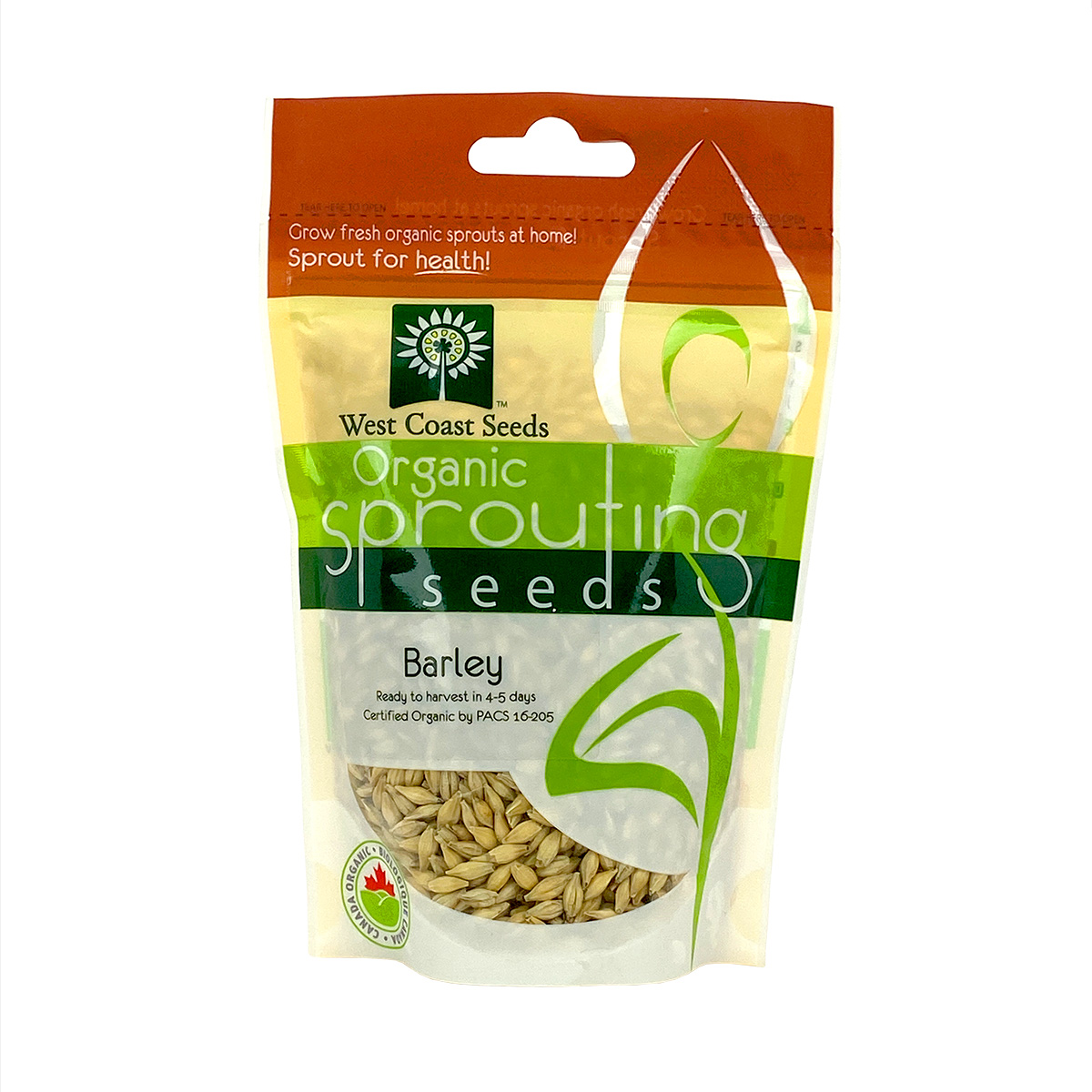 Barley Sprouting Seeds 125g