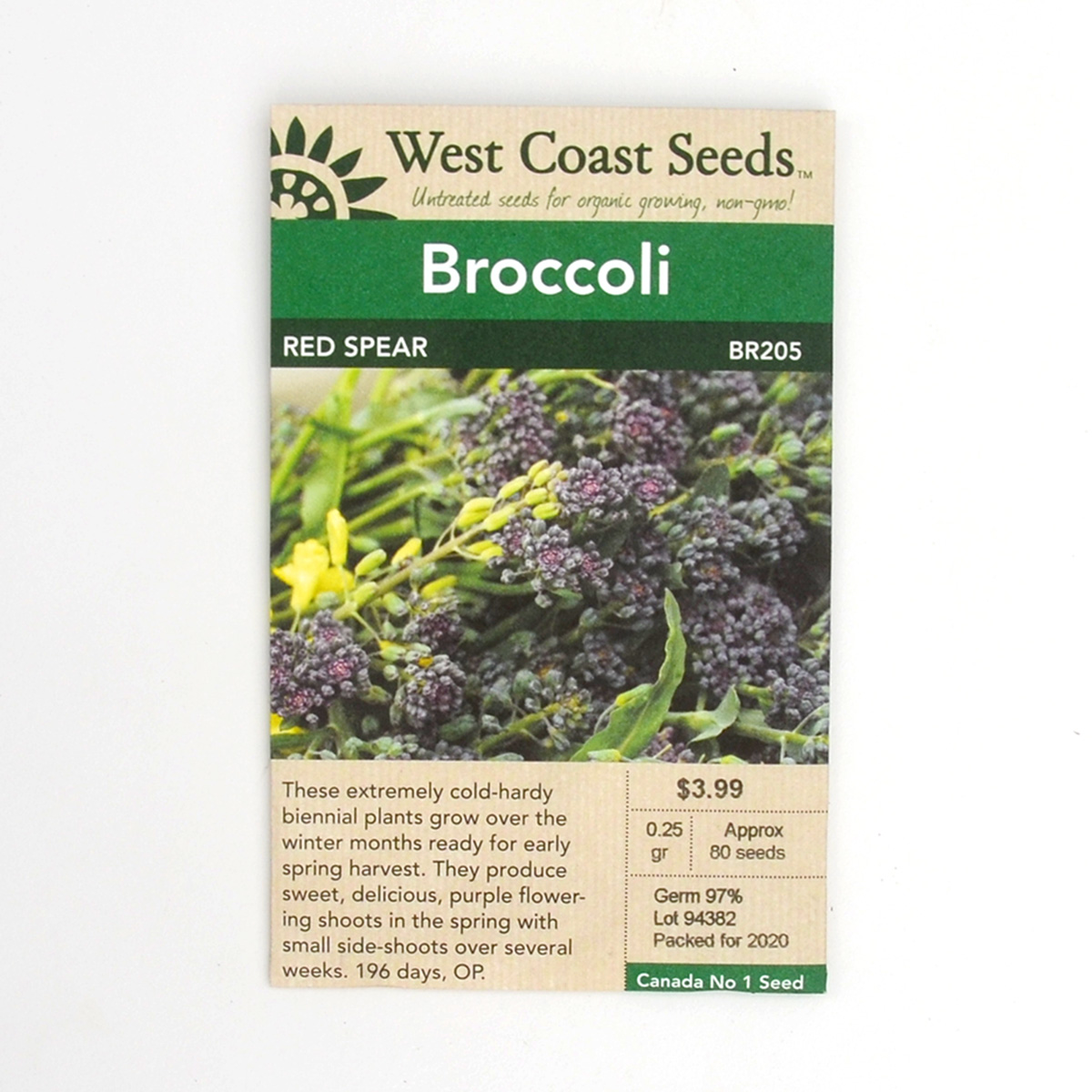 Broccoli Red Spear Seeds BR205