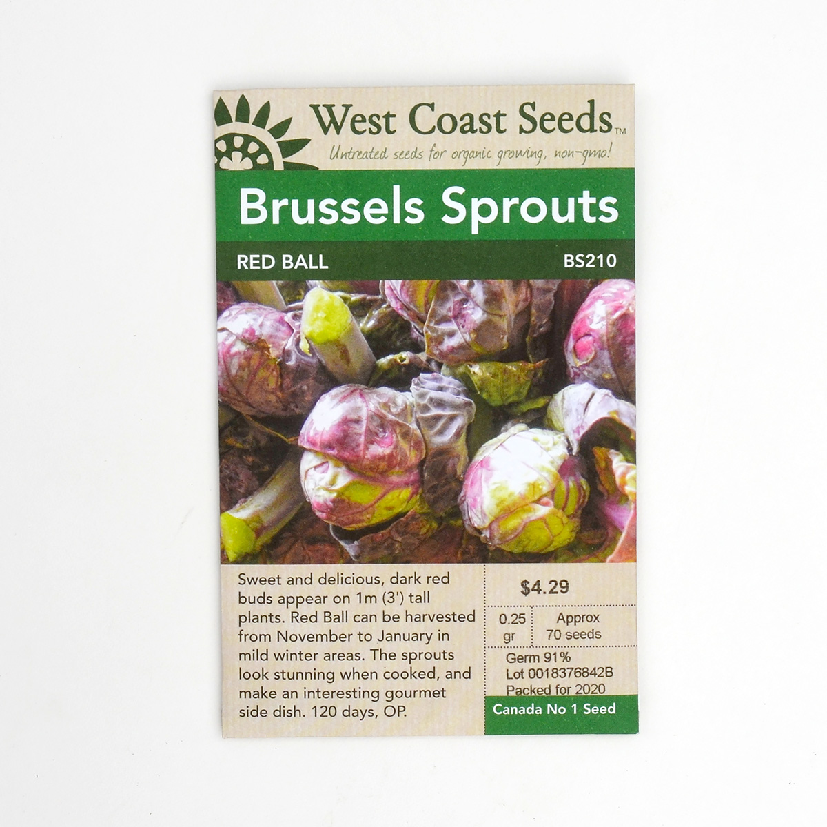 Brussels Sprouts Red Ball Seeds BS210