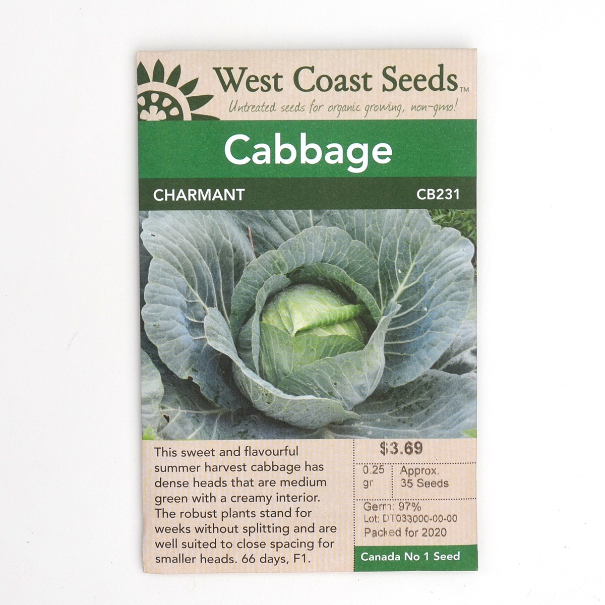 Cabbage Charmant Seeds CB231
