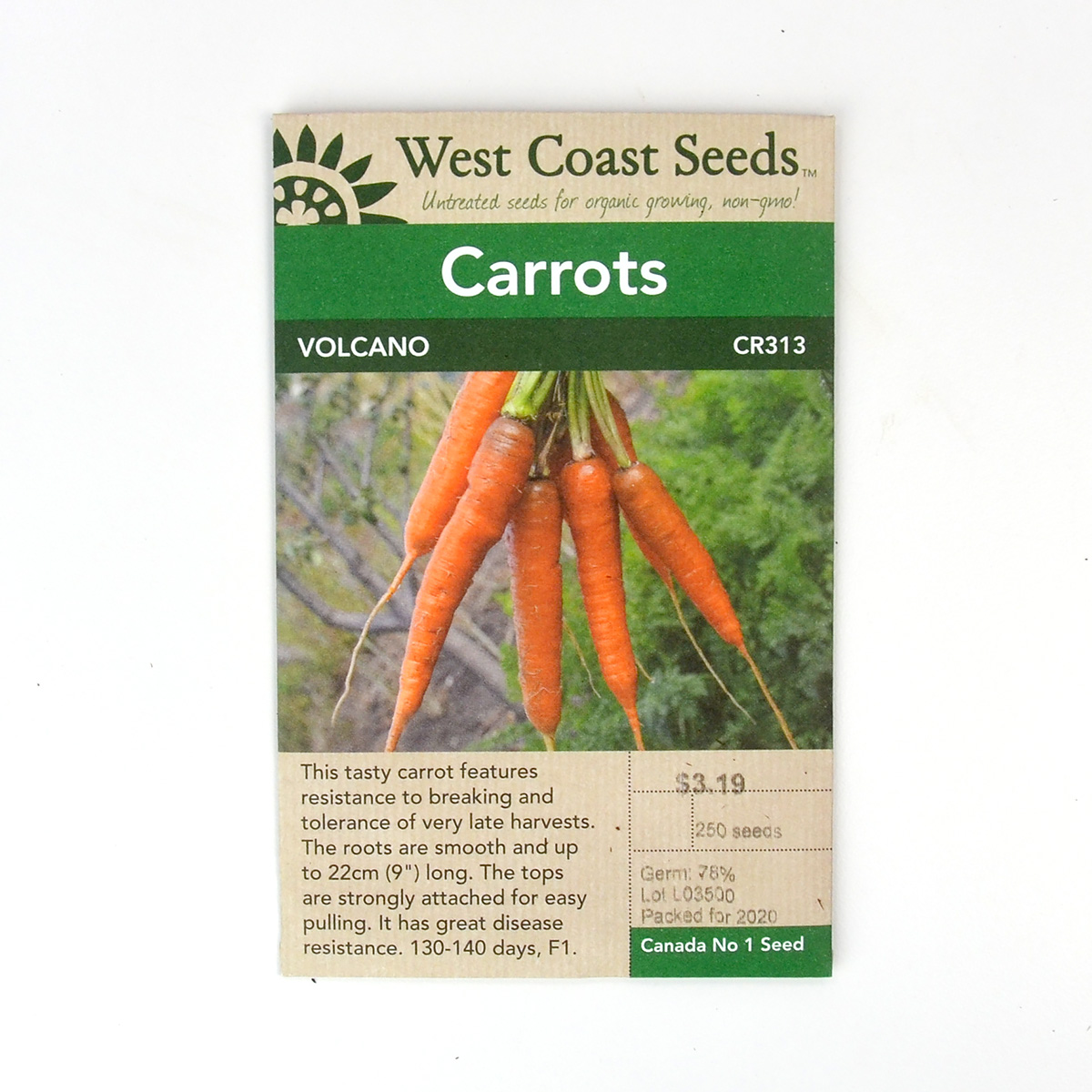 Carrot Volcano Seeds CR313
