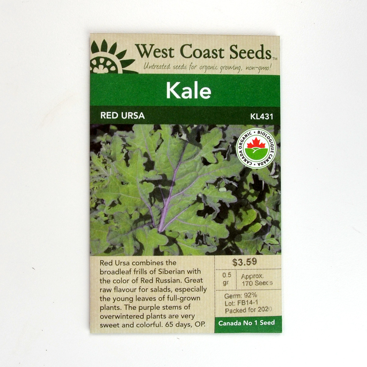 Red Ursa Kale Seeds KL431