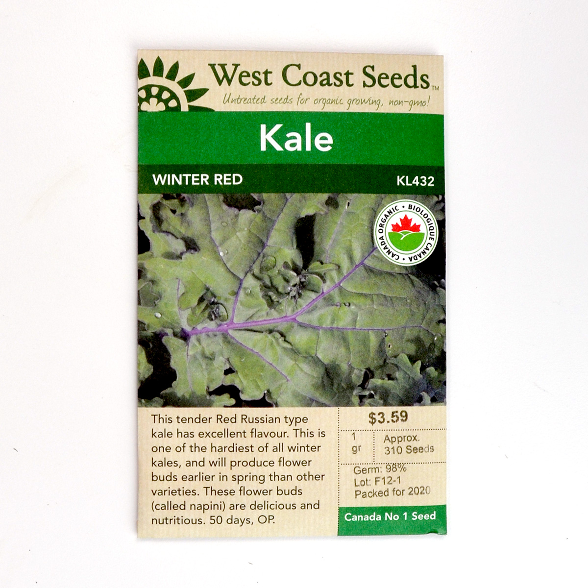 Kale Winter Red Seeds KL432