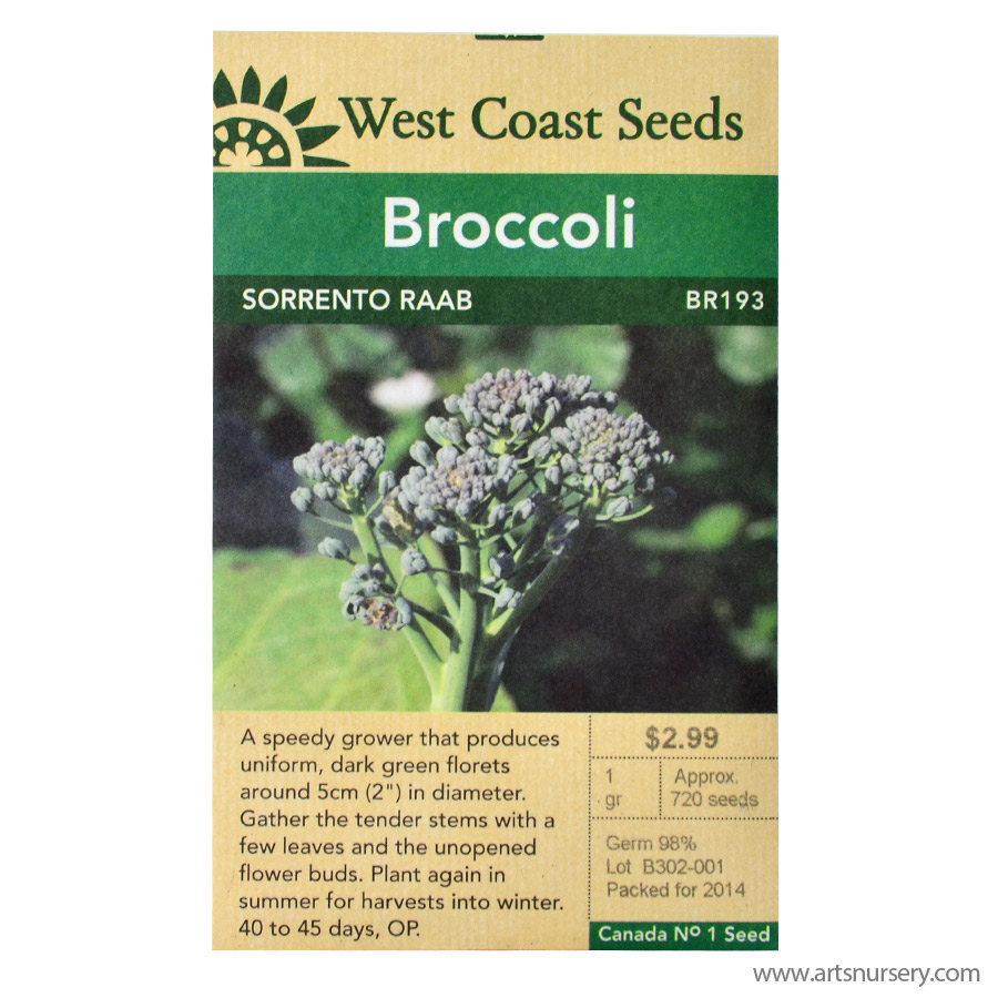 Sorrento Raab Broccoli Seeds