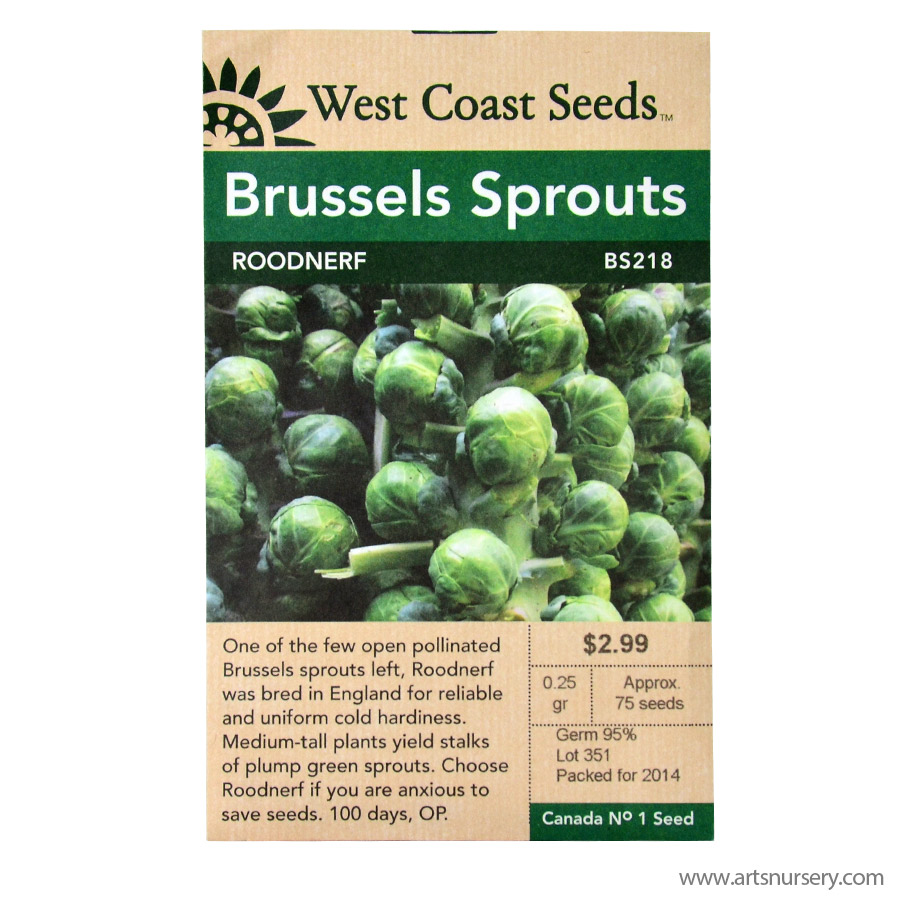 Roodnerf Brussel Sprout Seeds
