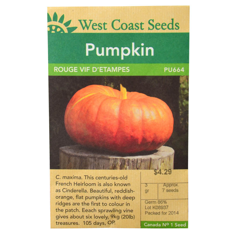 Pumpkin Rouge Vif D'Etampes Seeds | West Coast Seeds
