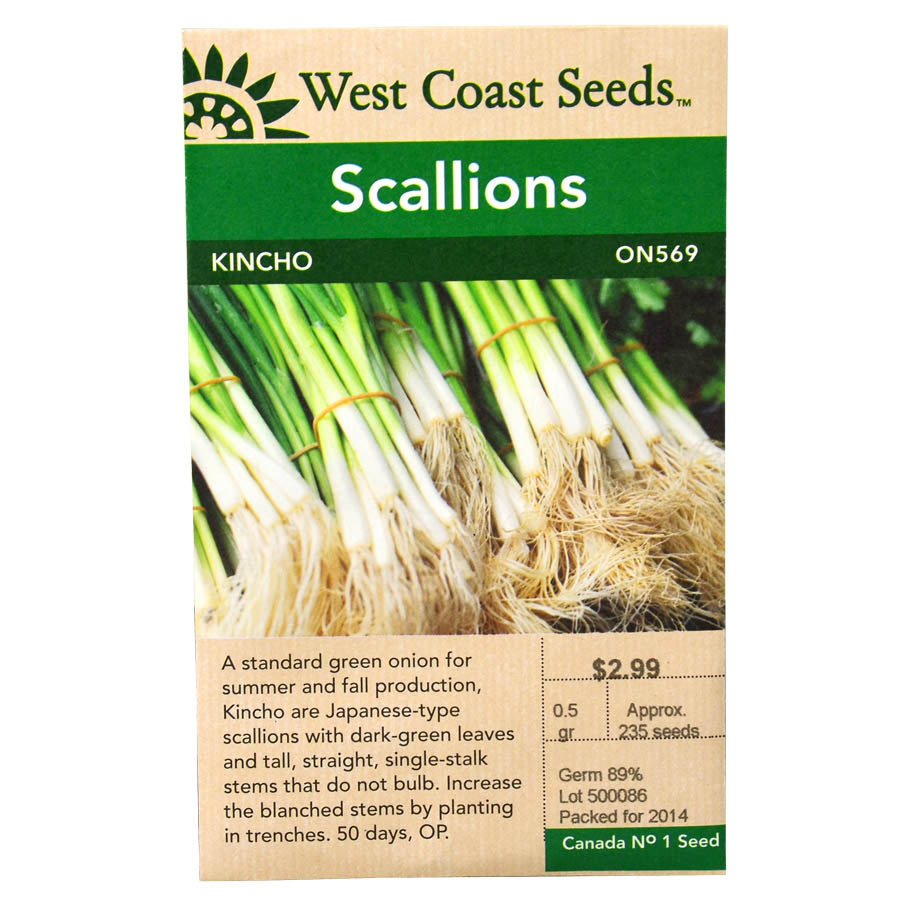 Scallions Kincho Seeds | West Coast Seeds