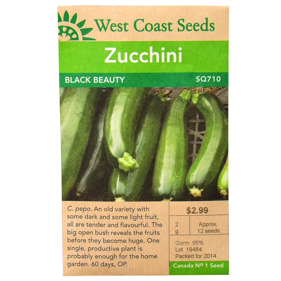 Zucchini Black Beauty Seeds | West Coast Seeds