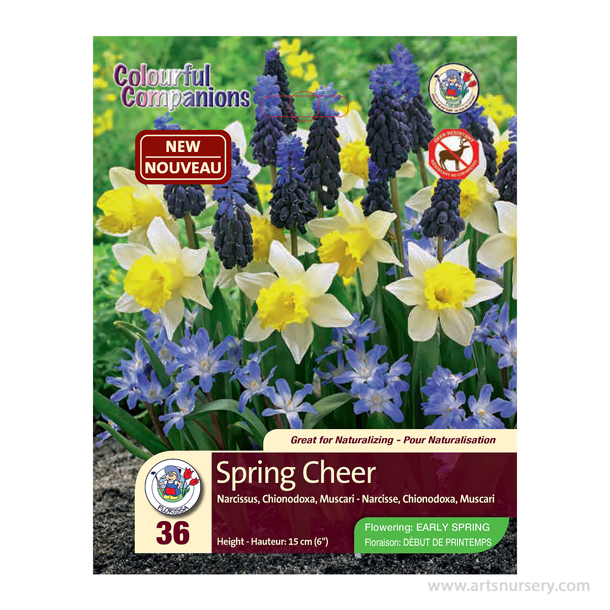 Colourful Companions Bulb Mix 'Spring Cheer'
