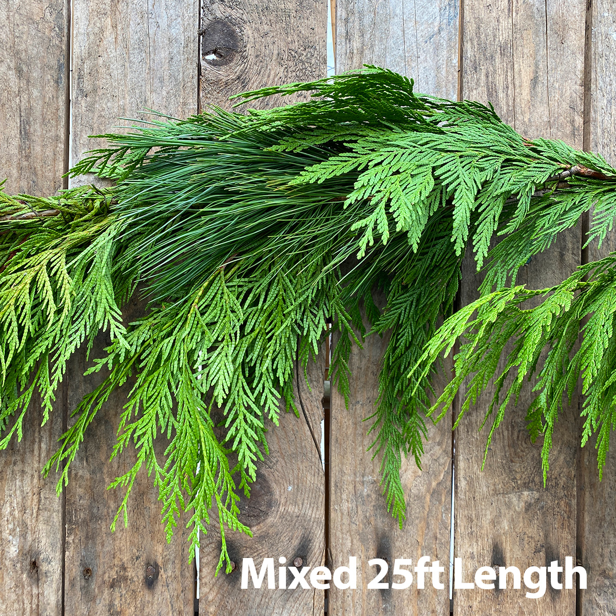Christmas Greens - Mixed Garland 25ft