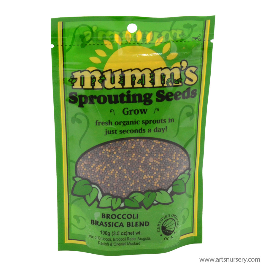 Mumms Sprouting Seeds Broccoli Brassica Blend 100g