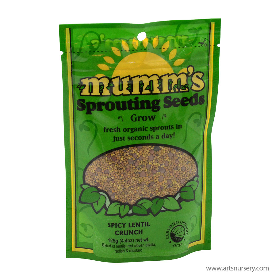 Mumms Sprouting Seeds Spicy Lentil Crunch 125g