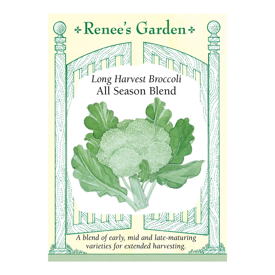 All Season Blend Long Harvest Broccoli Seeds