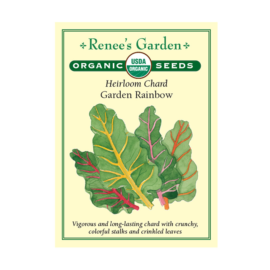 Garden Rainbow Heirloom Chard Seeds