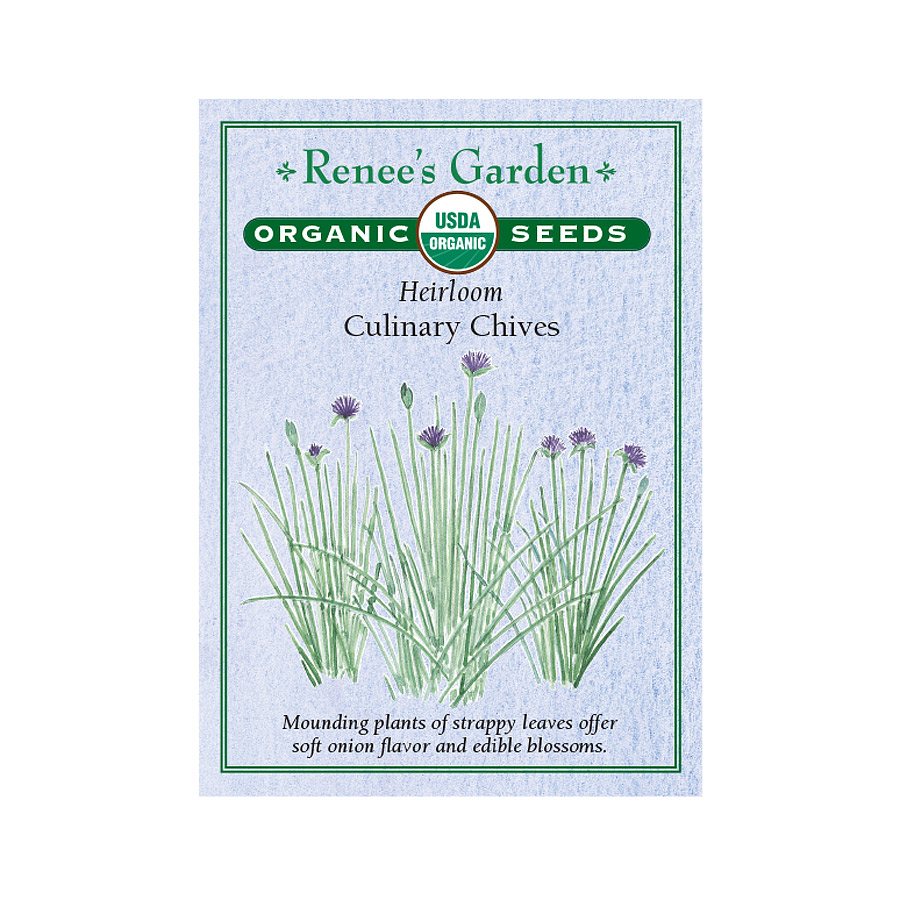 Heirloom Culinary Chive Seeds