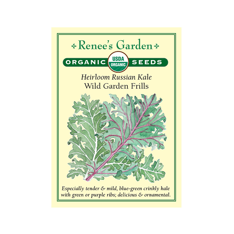 Wild Garden Frills Heirloom Russian Kale Seeds