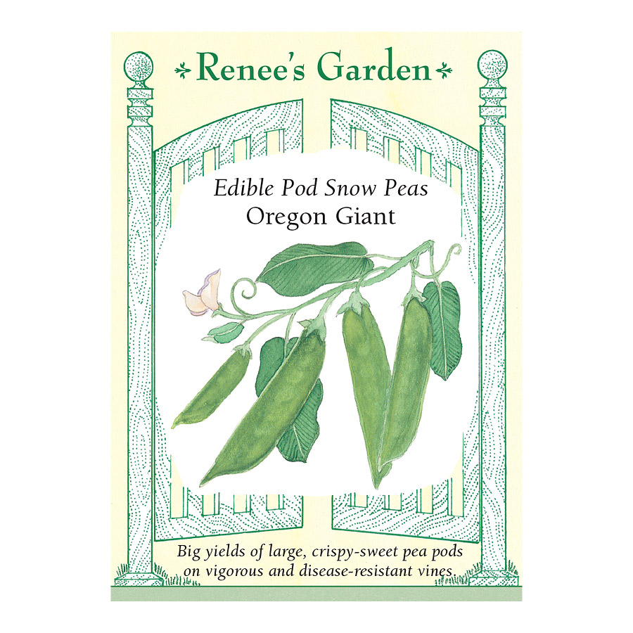Oregon Giant Snow Pea Seeds