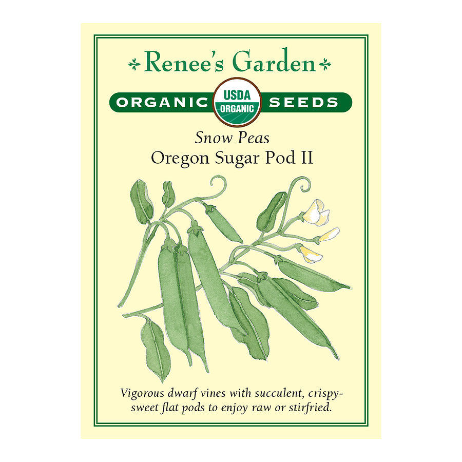 Oregon Sugar Pod 2 Snow Pea Seeds