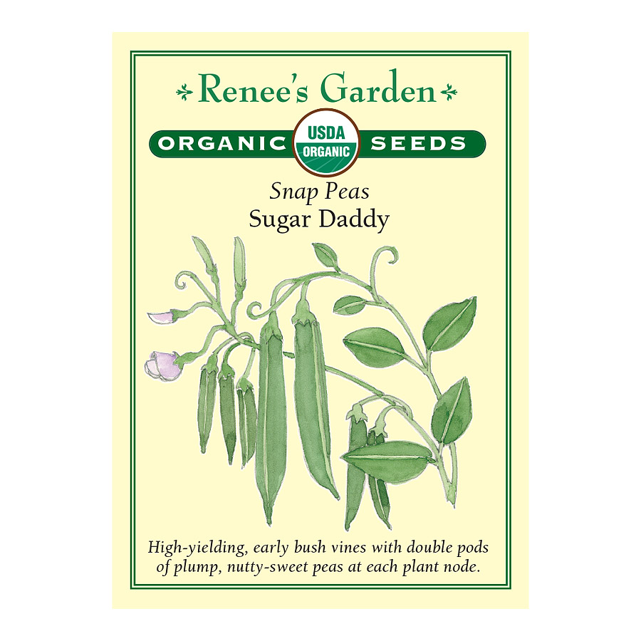 Sugar Daddy Snap Pea Seeds