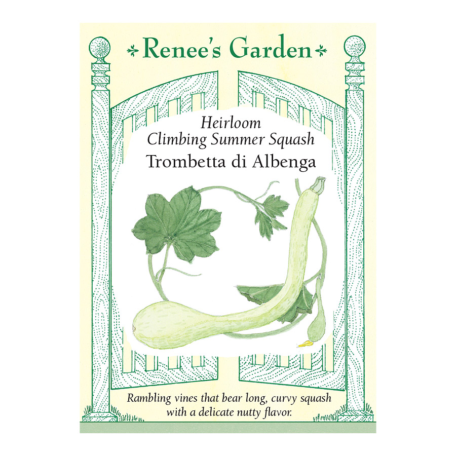 Trombetta di Albenga Heirloom Climbing Summer Squash Seeds