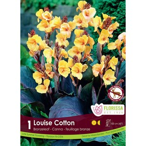 Canna_Louise_Cotton.jpg