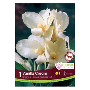Canna_VanillaCream.jpg