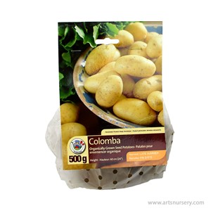 Colomba_SeedPotato.jpg