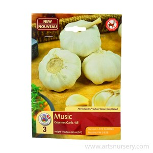 Garlic_Music.jpg