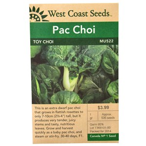 WC_PacChoi_ToyChoi_Front.jpg