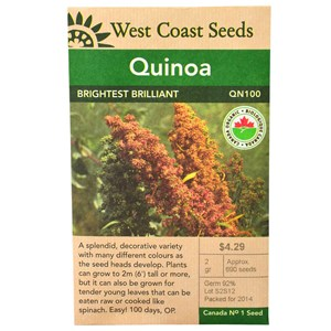 WC_Quinoa_BrightestBrilliant_Front.jpg