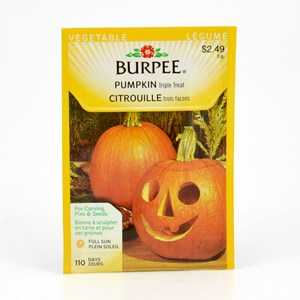 burpee_pumpkin_tripletreat.jpg